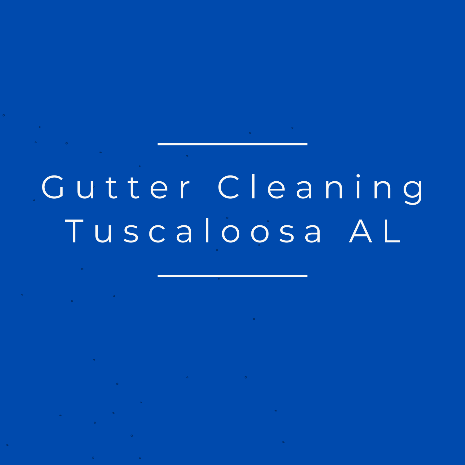 Gutter Cleaning Tuscaloosa